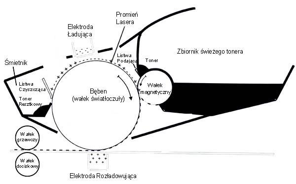 Jak działają drukarki laserowe - schemat pracy i budowy kartridża laserowego z tonerem